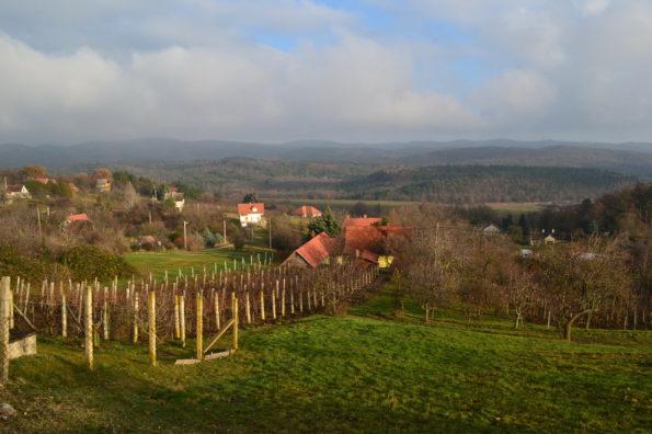Haus und Mini Feriensiedlung der gehobenen Art mit Panorama auf den Balaton