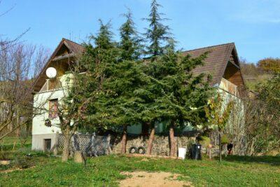 Haus am Wald mit Aussicht auf den Balaton